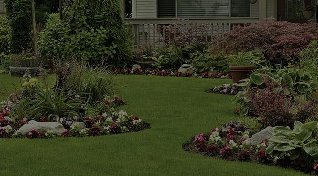 Baton Rouge Landscape Design